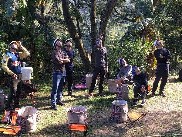 treeman 樹木風險評估