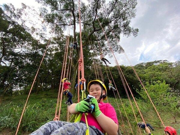 桃園攀樹體驗